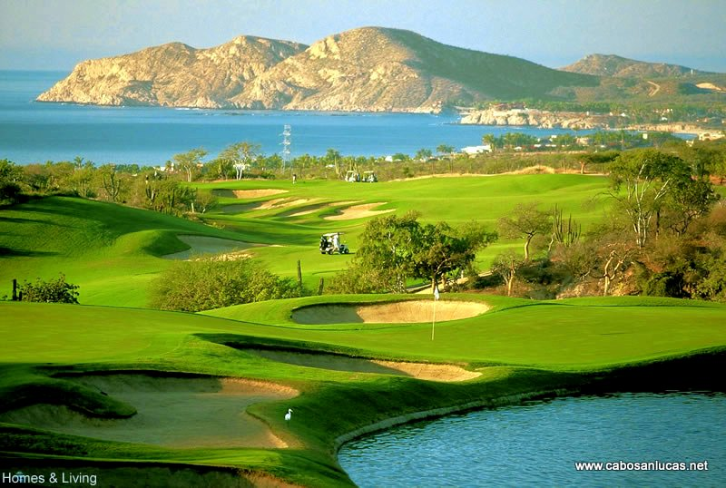 Cabo San Lucas Country Club View